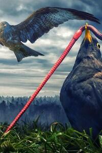 800x1280 Birds Digital Art