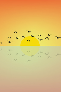 Birds Flying Sun Minimal 4k