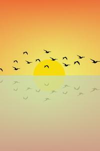 320x480 Birds Flying Sun Minimal 4k
