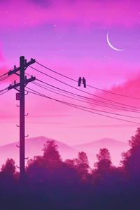 640x960 Birds Sitting On Electric Power Poles Lines Twilight 5k