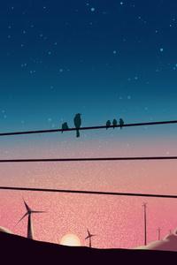 Birds Sitting On Powerline 4k