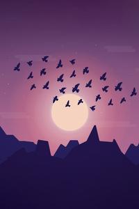 640x1136 Birds Sky Minimal 5k