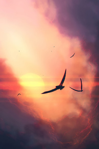 1440x2960 Birds Sunset Clouds 4k