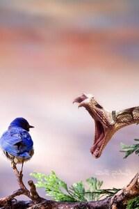 Bite Birds
