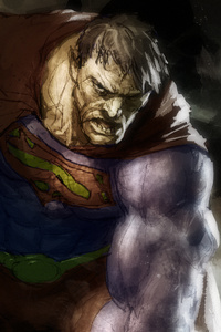 640x960 Bizarro Superman 4k