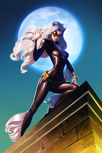 800x1280 Black Cat Felicia Hardy Dc Comics