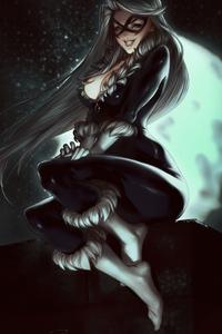 Black Cat4k Art