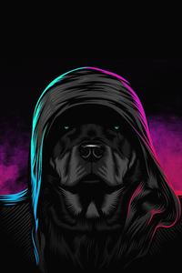 320x568 Black Dog Glowing Eyes 4k