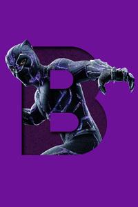 Black Panther 5k Art