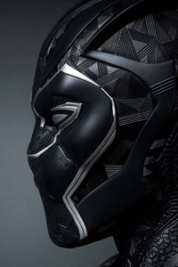Black Panther 5k New