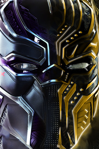 640x960 Black Panther And Erik Killmonger Behance
