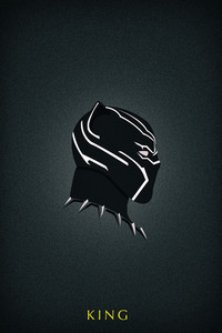 Black Panther Art HD