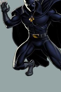 Black Panther Fictional Superhero 2
