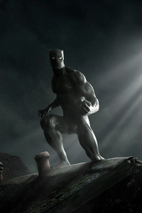 240x400 Black Panther Finding Stark Industries
