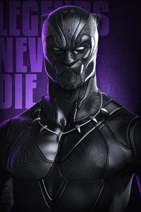 Black Panther Legend Never Die 4k