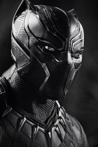 Black Panther Monochrome 4k