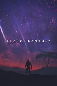 Black Panther Movie Artwork 2018
