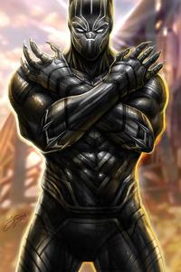 1080x2280 Black Panther New Arts