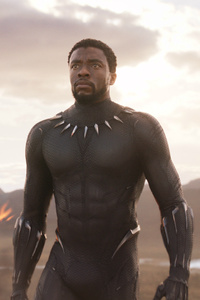 Black Panther T Challa 2018