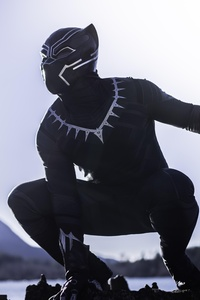 Black Panther The Protector Of Wakanda