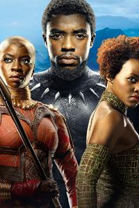 Black Panther Theatre Poster 4k