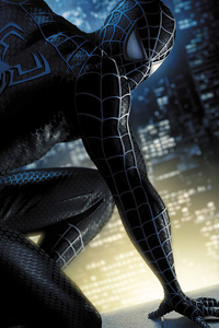 640x1136 Black Spider Man