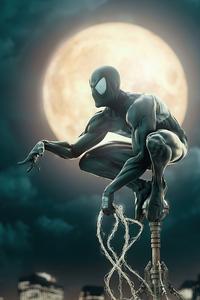 Black Spider Man Suit
