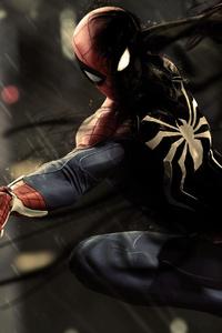 Black Spiderman Ps4 Pro 4k