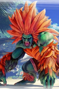 1242x2688 Blanka Street Fighter V 8k