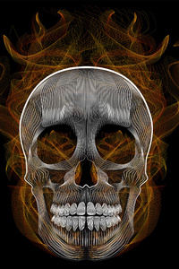 480x854 Blend Skull Vector Illustration