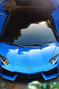 Blue Aventador 4k New
