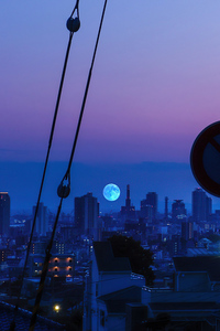 1280x2120 Blue Moon
