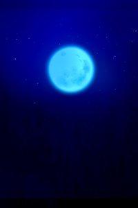 1440x2960 Blue Moon Dark Night
