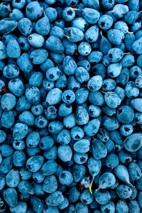 320x480 Blueberries