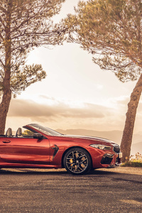 BMW M8 Competition Cabrio 2020