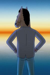 480x800 Bojack Horseman Season 6 Poster