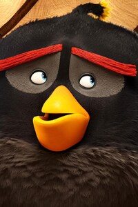 320x480 Bomb In The Angry Birds Movie