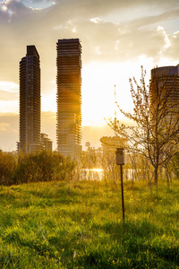 Building Cityscape Grass Sunbeam Sunrise
