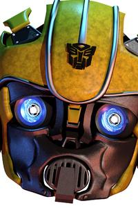 Bumblebee Closeup 4k