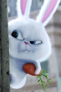 Bunny The Secrete Life of Pets Movie