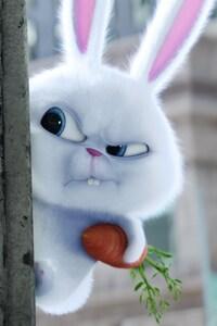 750x1334 Bunny The Secrete Life of Pets Movie