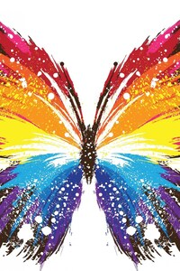 640x1136 Butterfly Abstract Colorful