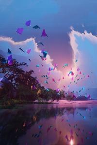 480x854 Butterfly Field