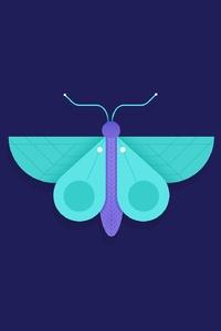 Butterfly Minimalism