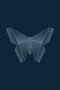Butterfly Symmetry Dark 5k