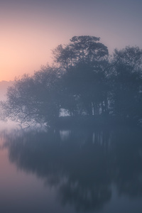 540x960 Calm Mist Morning 8k
