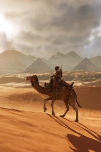 Camel Assassins Creed Origins 8k