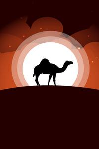 320x480 Camel Minimal Art 5k