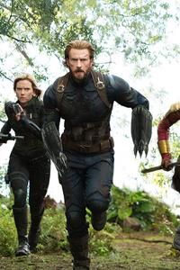 Captain America Bucky Black Panther Black Widow Avengers Infinity War