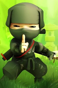 1080x2160 Cartoon Ninja